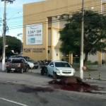 CABO FRIO – Cavalo morre atropelado em frente à delegacia de Cabo Frio