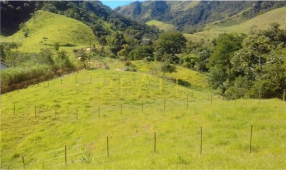 Reale Imóveis Terreno e Sana.jpg1