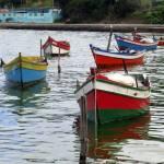 REGIÃO DOS LAGOS – Período de defeso na Lagoa de Araruama começa nesta terça-feira