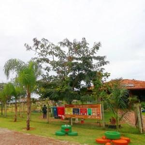 RIO DAS OSTRAS – Inscrições para oficinas de hortas serão abertas nesta segunda em Rio das Ostras