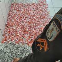 AÇÕES POLICIAIS – PM apreende grande quantidade de drogas no Morro do Milagre