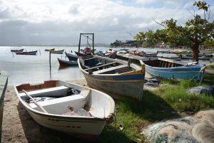 Laguna de Araruama, RJ, entra em defeso e pesca é proibida até 31 de outubro