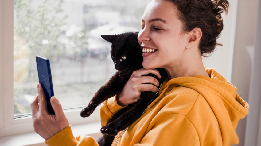 fotos gato