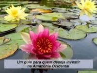 Cartilha de Incentivos Fiscais na Amazônia