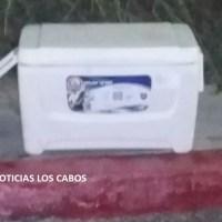 ¡Dejan hieleras con restos humanos en Cabo San Lucas!