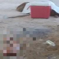 ¡Terrorífico hallazgo en una hielera en San José del Cabo!
