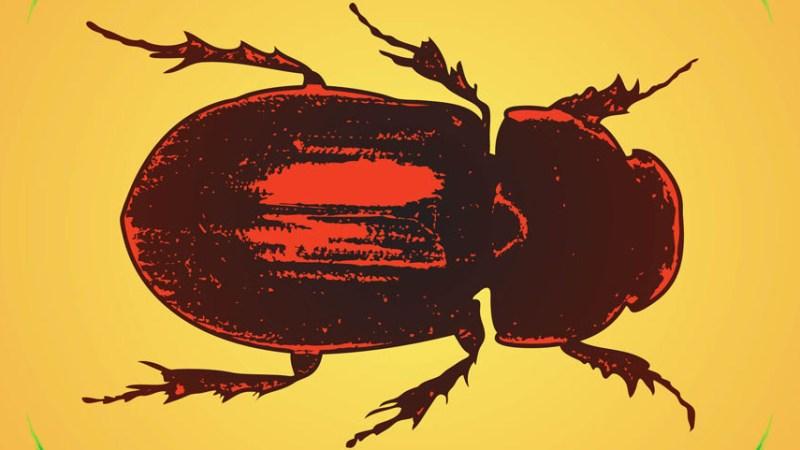 Los mil escarabajos de plata