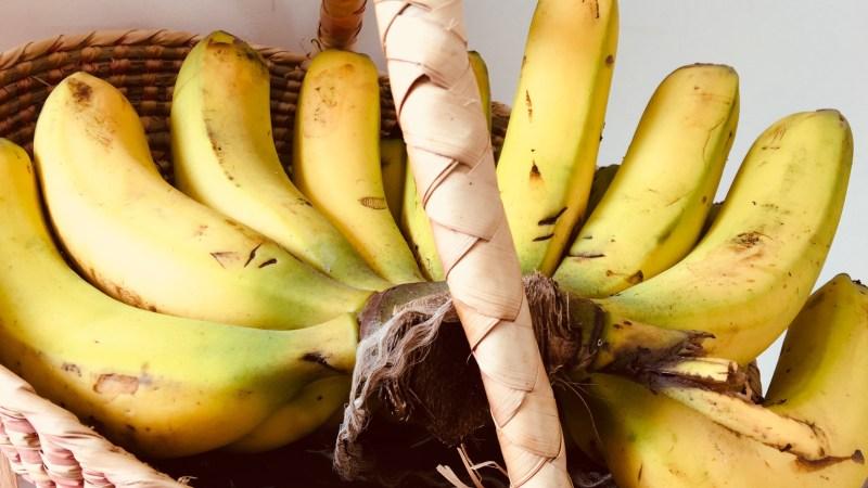 Vida de frutas