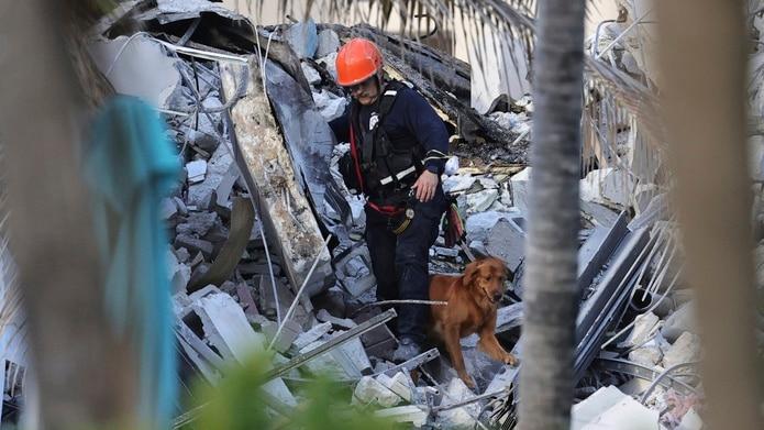 El alcalde de Surfside explicó en una conferencia de prensa que perros entrenados trabajaron durante la noche para rescatar a personas atrapadas y que al menos diez personas fueron atendidas por personal médico en el lugar y algunos fueron trasladados a hospitales cercanos. (David Santiago/Miami Herald via AP)