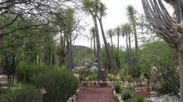 Zapotitlan espera aumento de turístas con su participación en la feria turistica