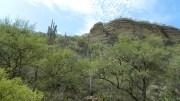 Invaden asentamientos irregulares zonas de la Reserva de la Biósfera
