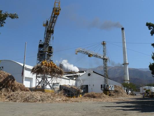 Podría iniciar zafra Ingenio Calipan a principios del mes de Diciembre