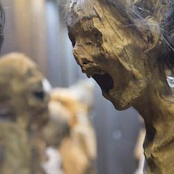 Se investiga desaparición de momias de Guanajuato