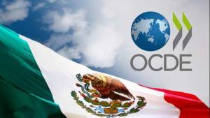 Actividad económica en México caerá 10.2% y la recuperación será sólo de 3%: OCDE