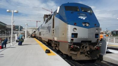 Una madre y su bebé murieron arrollados por un tren en Estados Unidos