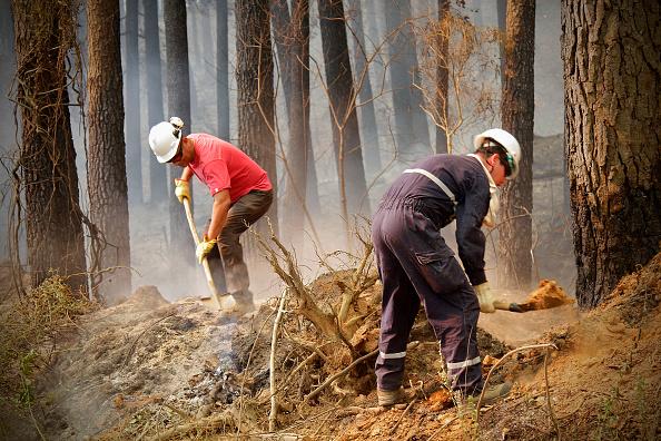 El fuego arrasó con cerca de 400 mil hectáreas forestales desde las regiones de Coquimbo hasta La Araucanía. (Getty Images, archivo)