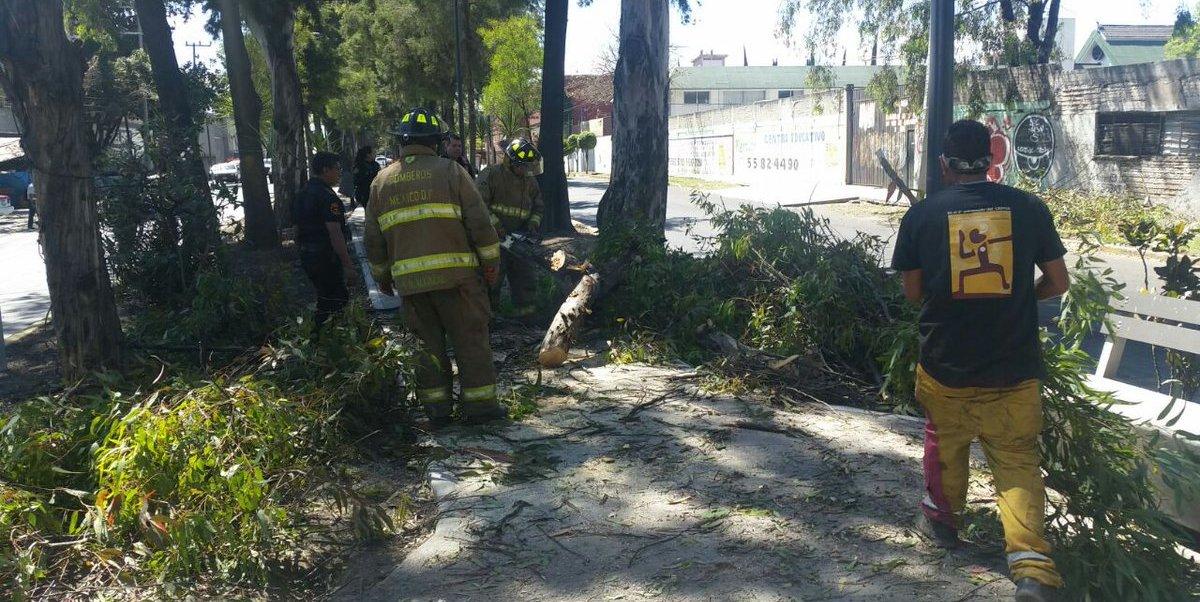 Las condiciones de fuertes vientos continuarán en la Ciudad de México