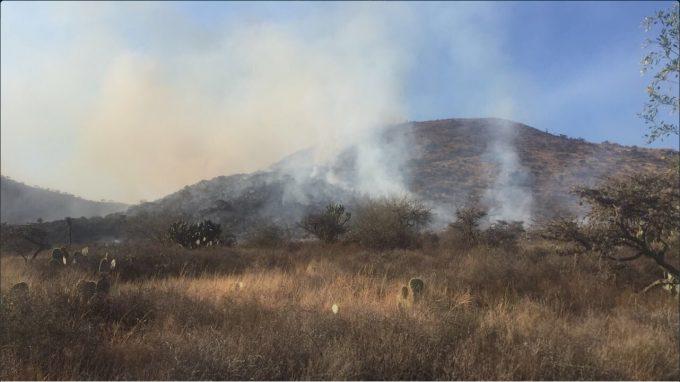 Incendio en Mexquitic de Carmona, San Luis Potosí; el incidente afecta varias hectáreas de pastizales