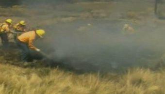 Al menos 554 hectáreas afectadas por incendios forestales en Veracruz . (Noticieros Televisa)