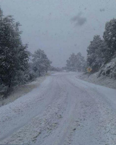 Tormenta invernal provoca nevadas en el norte y sureste de Sonora