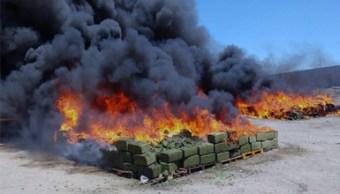 Incineran nueve toneladas de diversas drogas en Jalisco