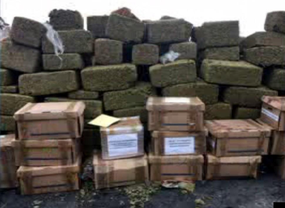 Droga asegurada en Nuevo León relacionada con 57 expedientes; los narcóticos son incinerados (Noticieros Televisa)