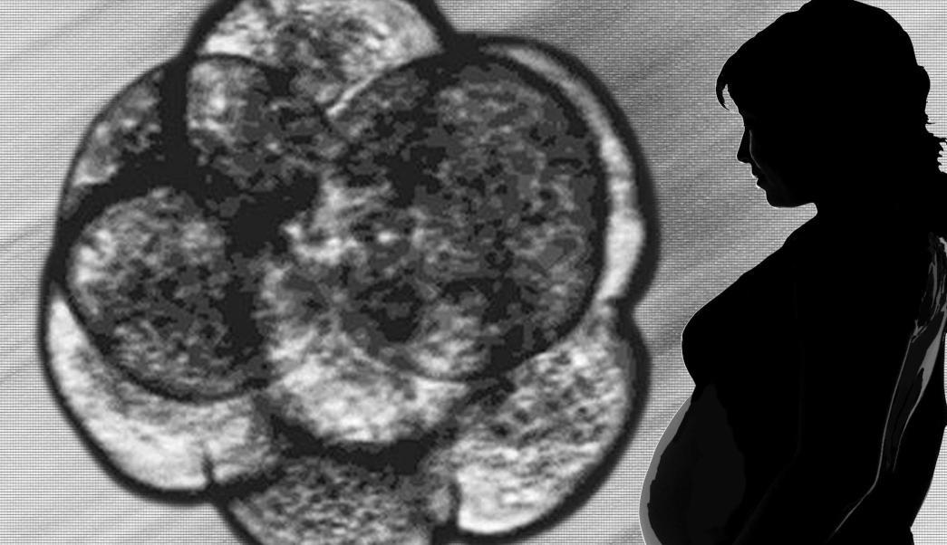 Gráfica de un embrión junto a la silueta de una mujer embarazada (AP, archivo)