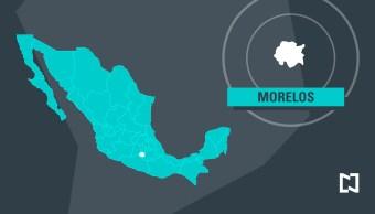 Decomisa Profepa borregos de muflón y un venado cola blanca en Morelos