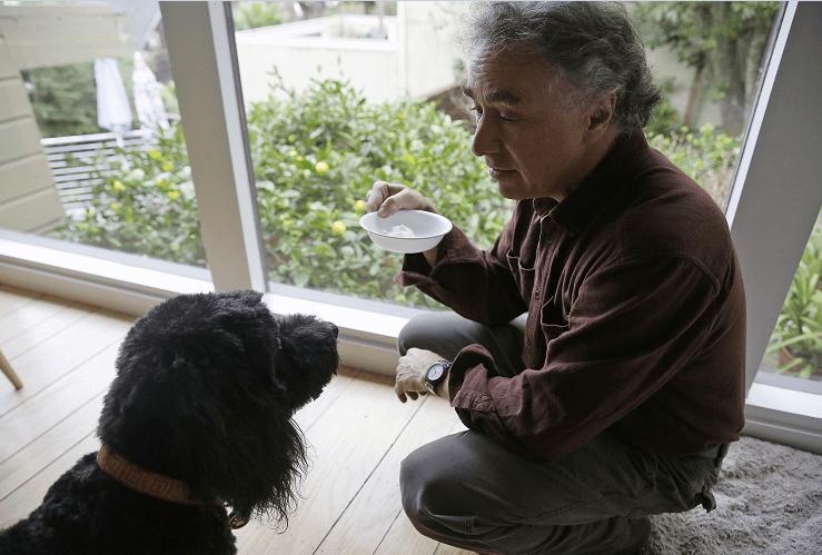 Michael Fasman da unas gotas de extracto de cannabis a su perra Hudson para eliminar el dolor causado por la artritis. (AP)