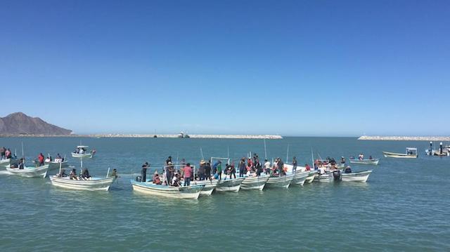 Pescadores se hicieron a la mar en decenas de embarcaciones contra el boicot al camarón (Twitter: @Algoqueinformar)