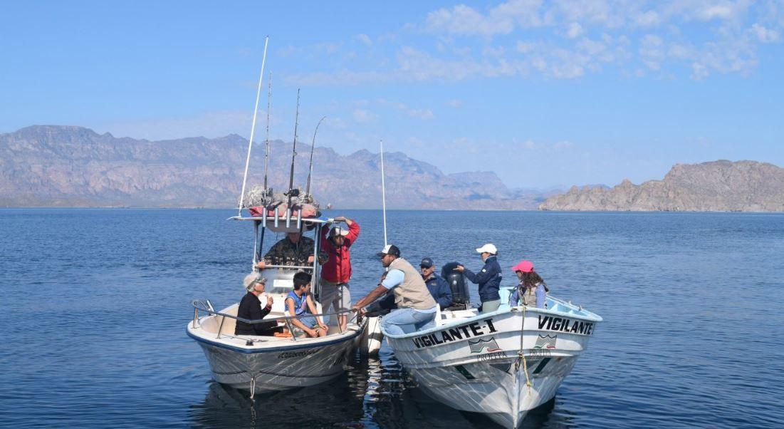 Profepa implementa operativo para protección de la ballena azul en Baja California Sur
