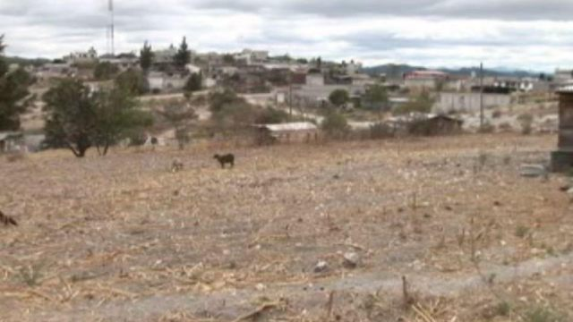 Sequía afecta a campesinos de San Luis Potosí.
