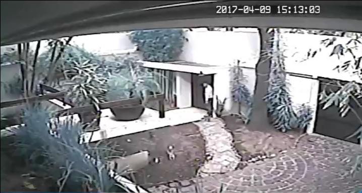Asaltantes ingresan a una vivienda de la colonia Florida, CDMX (Noticieros Televisa)