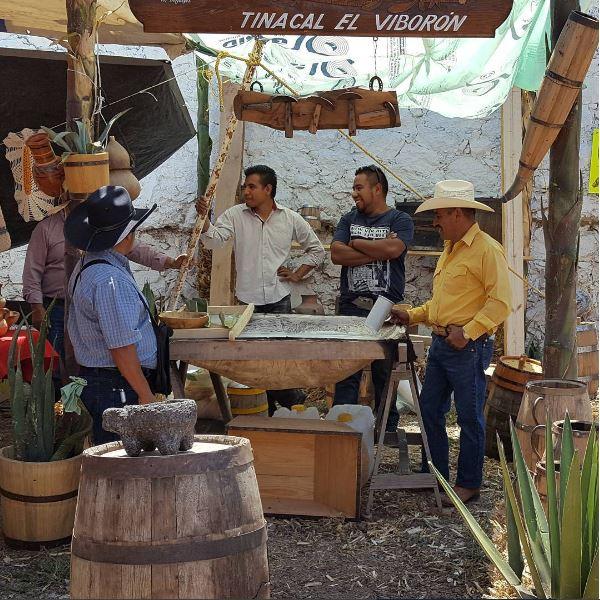 Feria, Pulque, Hidalgo, Tlaxiaca