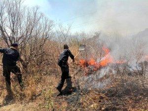 Incendio forestal en el municipio de Yécora. (Twitter: @PespSonora)