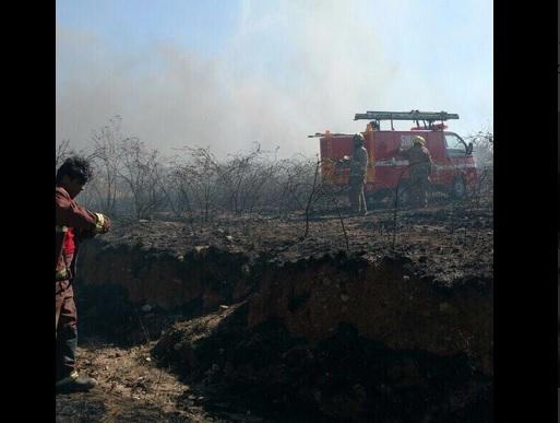 Incendio de pastizales en San José de la Luz en Guanajuato. (Twitter @Gtoesmejor, archivo)