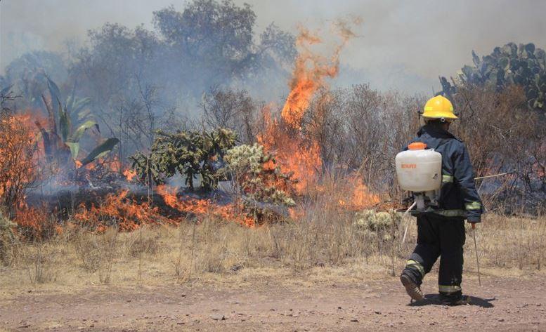 Incendios, bomberos, hidalgo, pachuca, brigadas, fuego