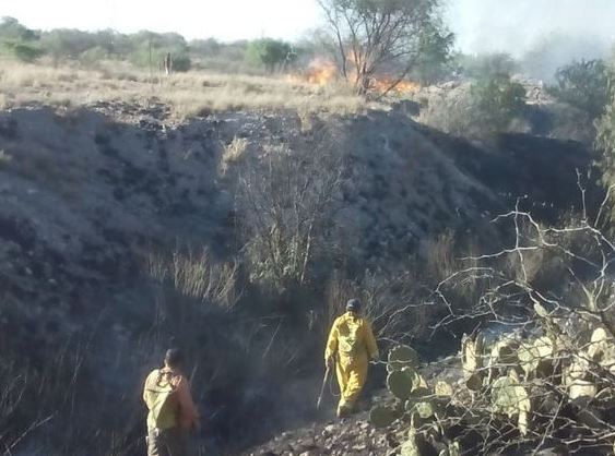 Protección Civil SLP atiende incendio en el cerro de San Miguelito. (Twitter @ProtCivilSLP, Archivo)