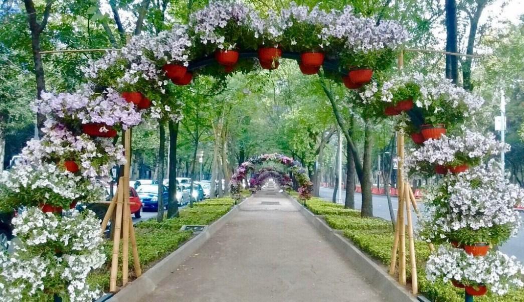 Primer festival de flores y jardines llega a reforma for Jardines mexico