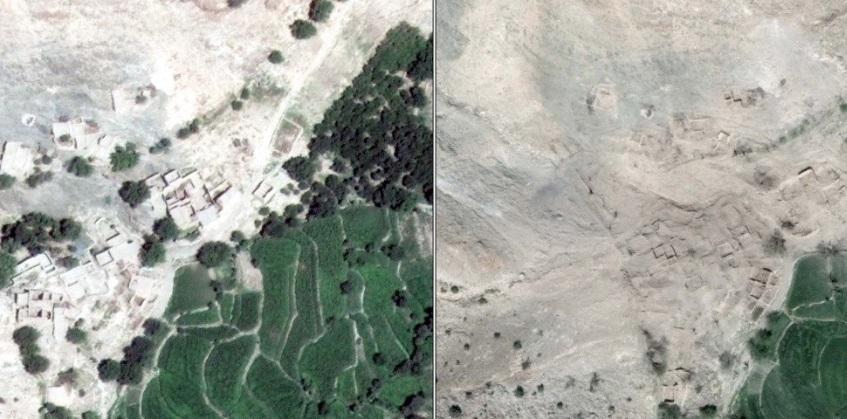 La destrucción fue absoluta en árboles al suroeste de la aldea de Asadkhel, Afganistán (Foto: businessinsider.com)