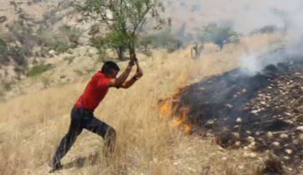 Se mantienen activos incendios en Guanajuato. (Noticieros Televisa)