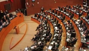 El pleno del Senado votó y aprobó el dictamen que expide la ley general contra la tortura. (Twitter: @Dolores_PL)