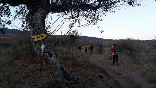 Peregrinos caminan por Jalisco para llegar a ver a la virgen en Talpa (Twitter @somosjalisco)