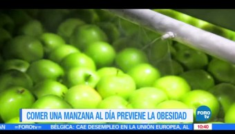 Washington, Previene obesidad, Matutino Express, Estudio en Washington