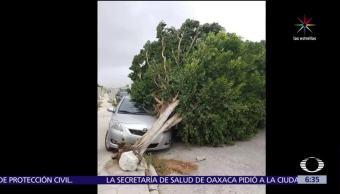 Turbonada, intensos vientos, Yucatán, causa daño