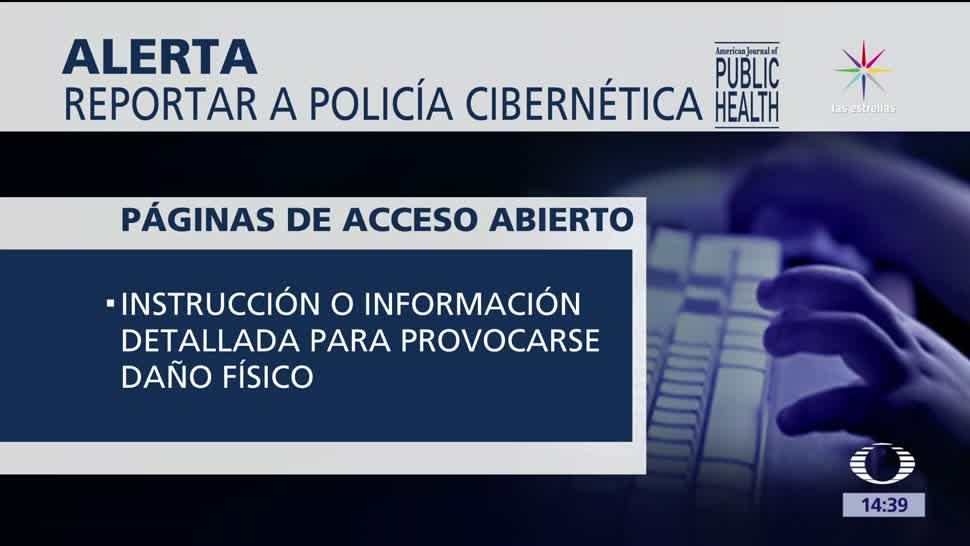 Lanzan alertas, delitos cibernéticos, American Journal of Public Health, consejos