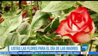 noticias, forotv, 10 de mayo, fecha más importante, floricultores, mexicanos