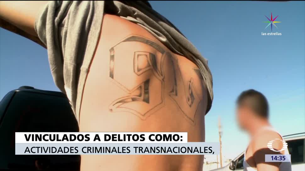 noticias, televisa news, Mega, operativo, pandillas, Estados Unidos