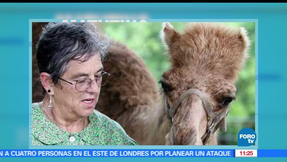 noticias, FOROtv, televisa news, Extra, Demanda mujer, parque