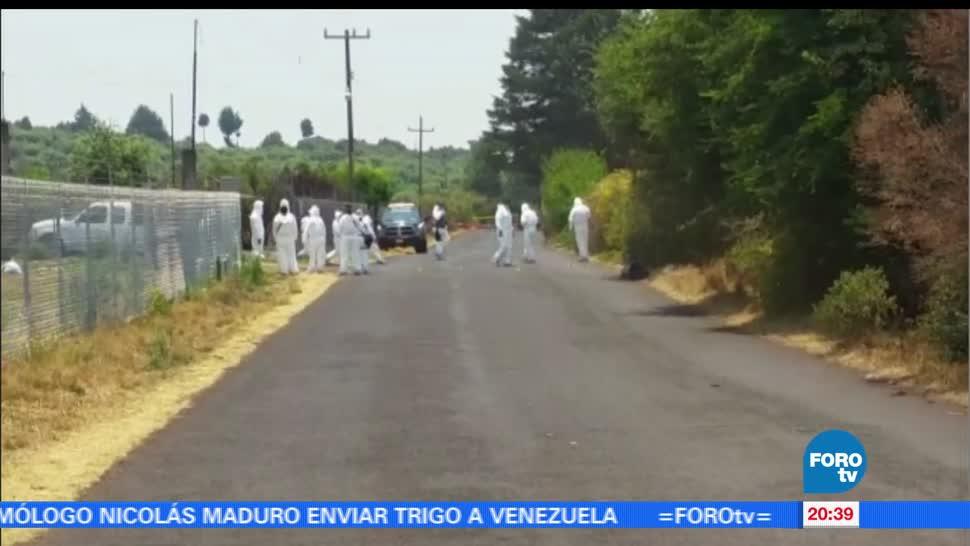 Asesinan, siete, hombres, Michoacán, cuanajillo, crimen